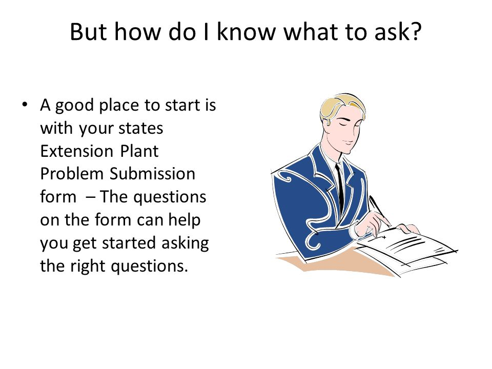 But how do I know what to ask? A good place to start is with your states Extension Plant Problem Submission form – The questions on the form can help