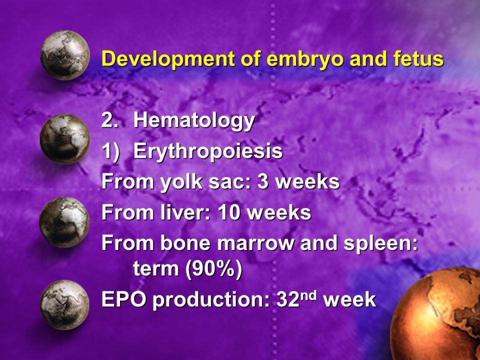 2.Hematology 1)Erythropoiesis From yolk sac: 3 weeks From liver: 10 weeks From bone marrow and spleen: term (90%) EPO production: 32 nd week