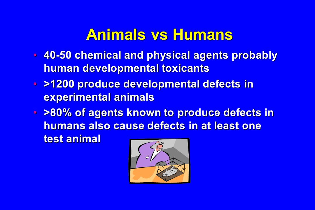 Animals vs Humans 40-50 chemical and physical agents probably human developmental toxicants40-50 chemical and physical agents probably human developmental toxicants >1200 produce developmental defects in experimental animals>1200 produce developmental defects in experimental animals >80% of agents known to produce defects in humans also cause defects in at least one test animal>80% of agents known to produce defects in humans also cause defects in at least one test animal