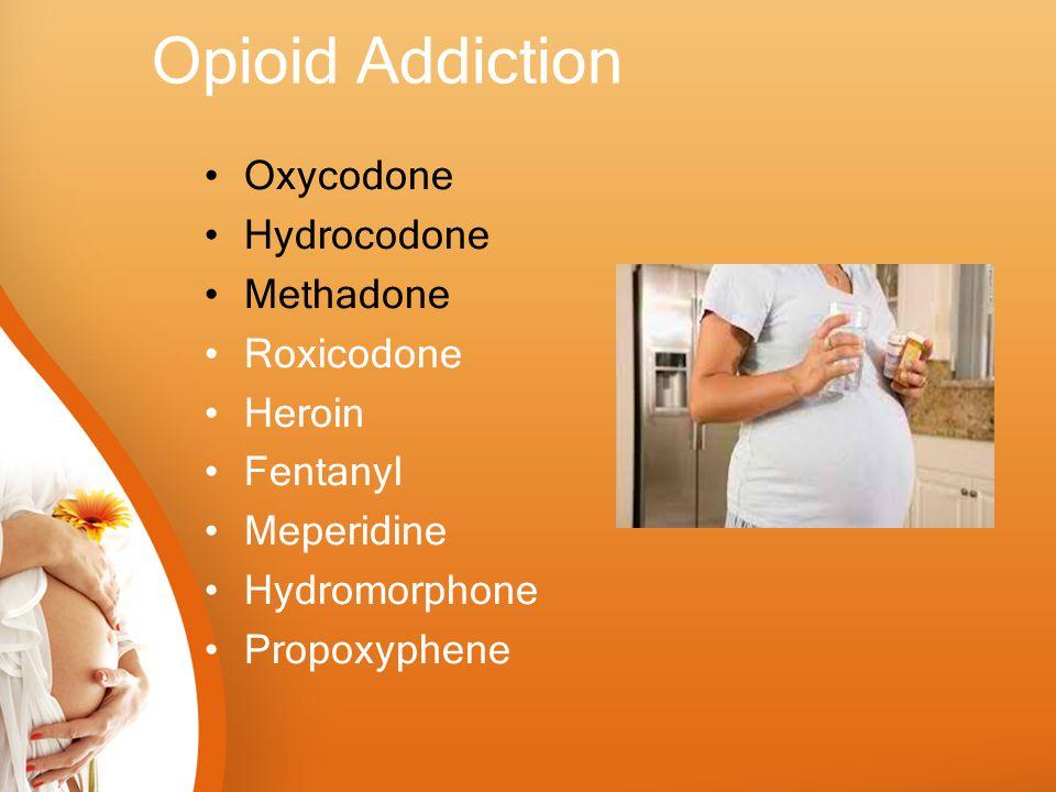 Opioid Addiction Oxycodone Hydrocodone Methadone Roxicodone Heroin Fentanyl Meperidine Hydromorphone Propoxyphene