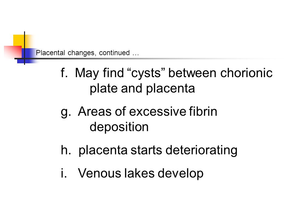 Placental changes, continued … f. May find cysts between chorionic plate and placenta g.