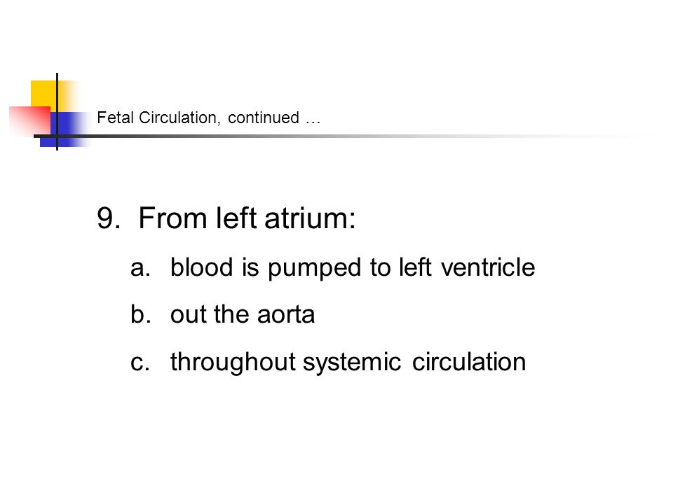 Fetal Circulation, continued … 9. From left atrium: a.
