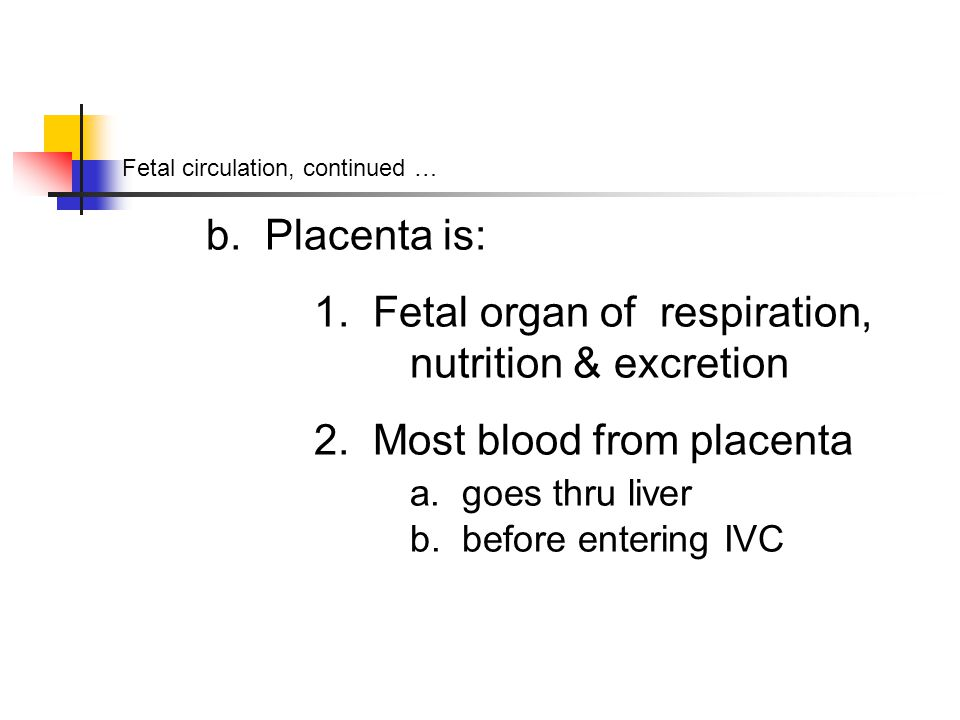Fetal circulation, continued … b. Placenta is: 1.