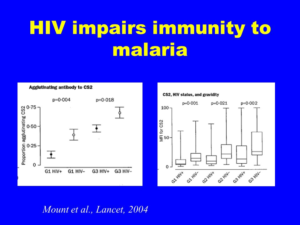 HIV and susceptibility to malaria HIV-infected pregnant women have more frequent and severe malaria Is the effect of HIV on malaria dependent on decreasing CD4's or decreasing antibody