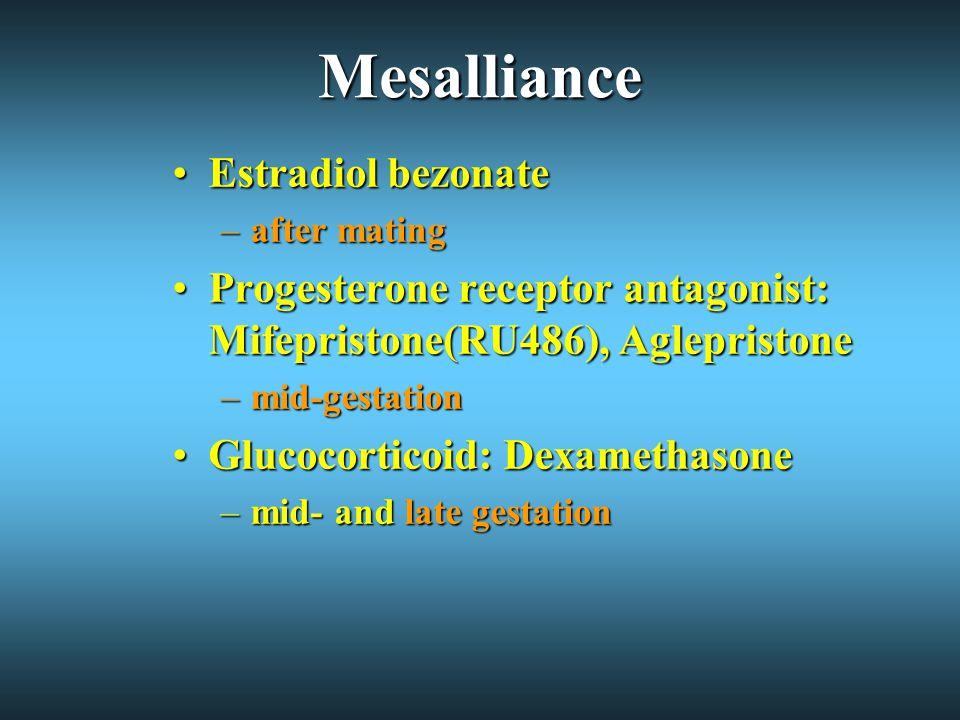 Mesalliance Estradiol bezonateEstradiol bezonate –after mating Progesterone receptor antagonist: Mifepristone(RU486), AglepristoneProgesterone receptor antagonist: Mifepristone(RU486), Aglepristone –mid-gestation Glucocorticoid: DexamethasoneGlucocorticoid: Dexamethasone –mid- and late gestation