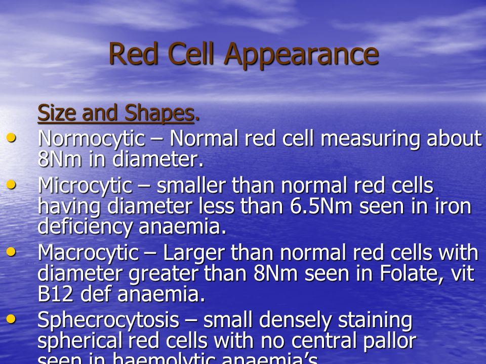 Red Cell Appearance Size and Shapes. Normocytic – Normal red cell measuring about 8Nm in diameter. Normocytic – Normal red cell measuring about 8Nm in