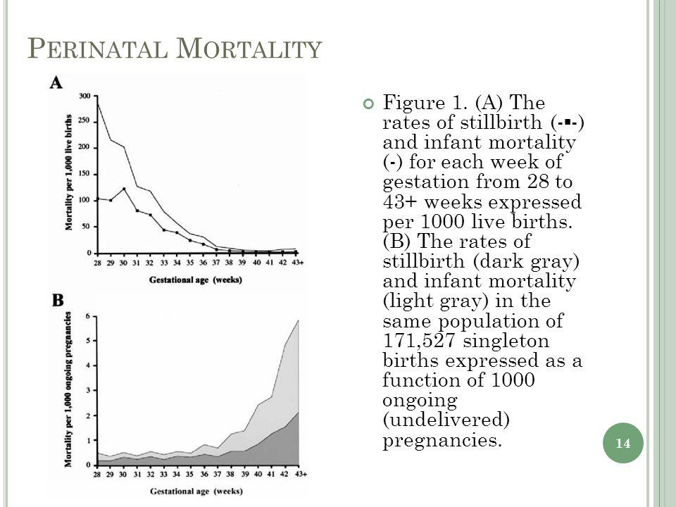 P ERINATAL M ORTALITY Figure 1.