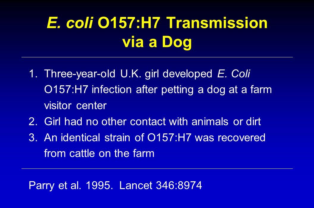 E. coli O157:H7 Transmission via a Dog 1. Three-year-old U.K. girl developed E. Coli O157:H7 infection after petting a dog at a farm visitor center 2.