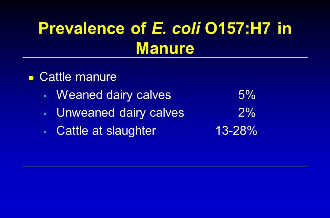 Prevalence of E.