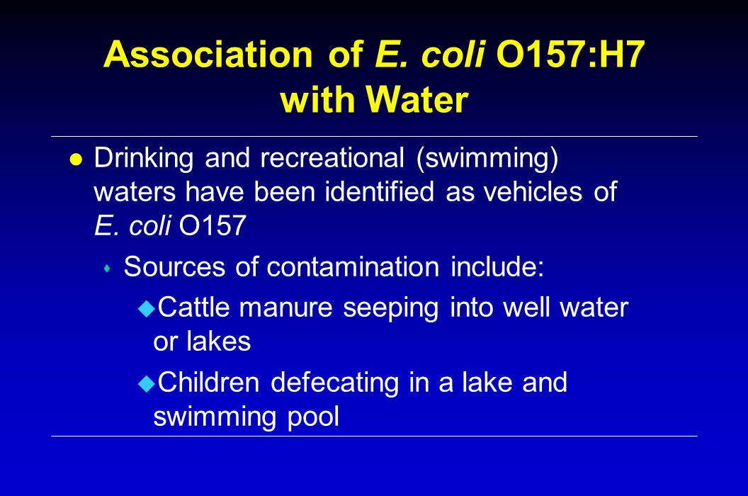 Association of E. coli O157:H7 with Water l Drinking and recreational (swimming) waters have been identified as vehicles of E. coli O157 s Sources of