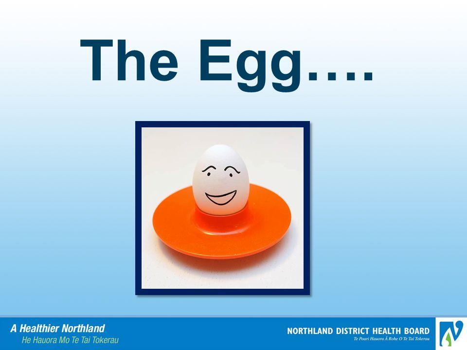 The Egg….