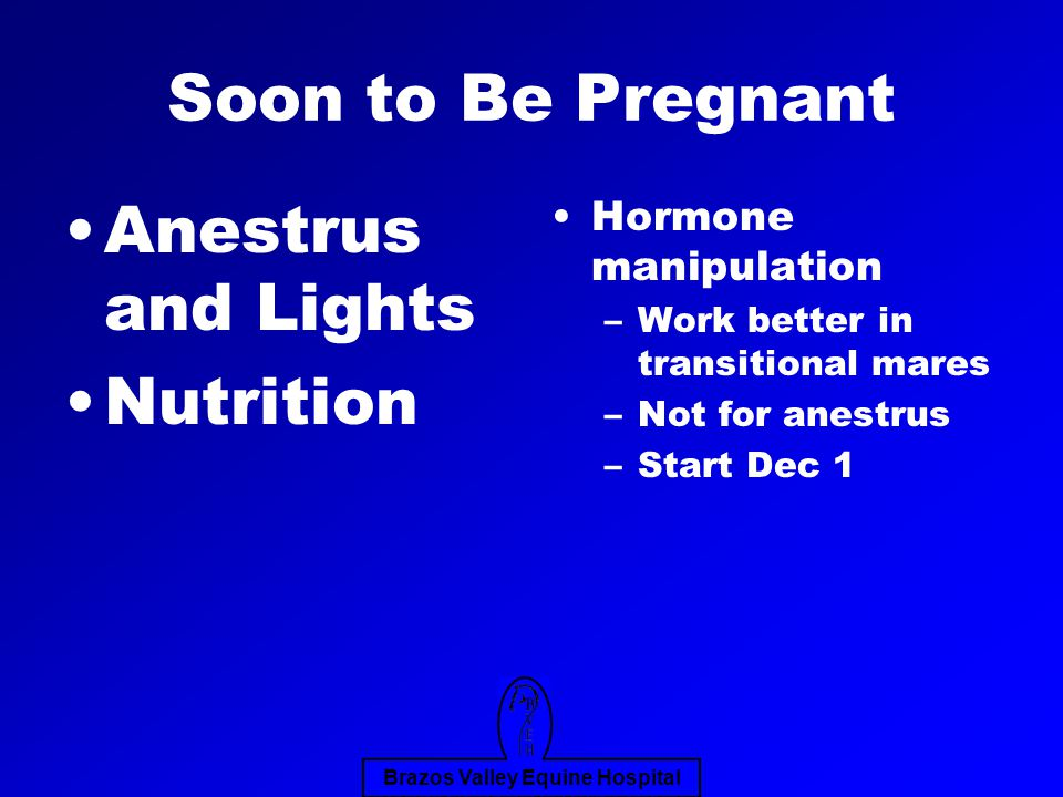 Brazos Valley Equine Hospital Soon to Be Pregnant Anestrus and Lights Nutrition Hormone manipulation –Work better in transitional mares –Not for anestrus –Start Dec 1