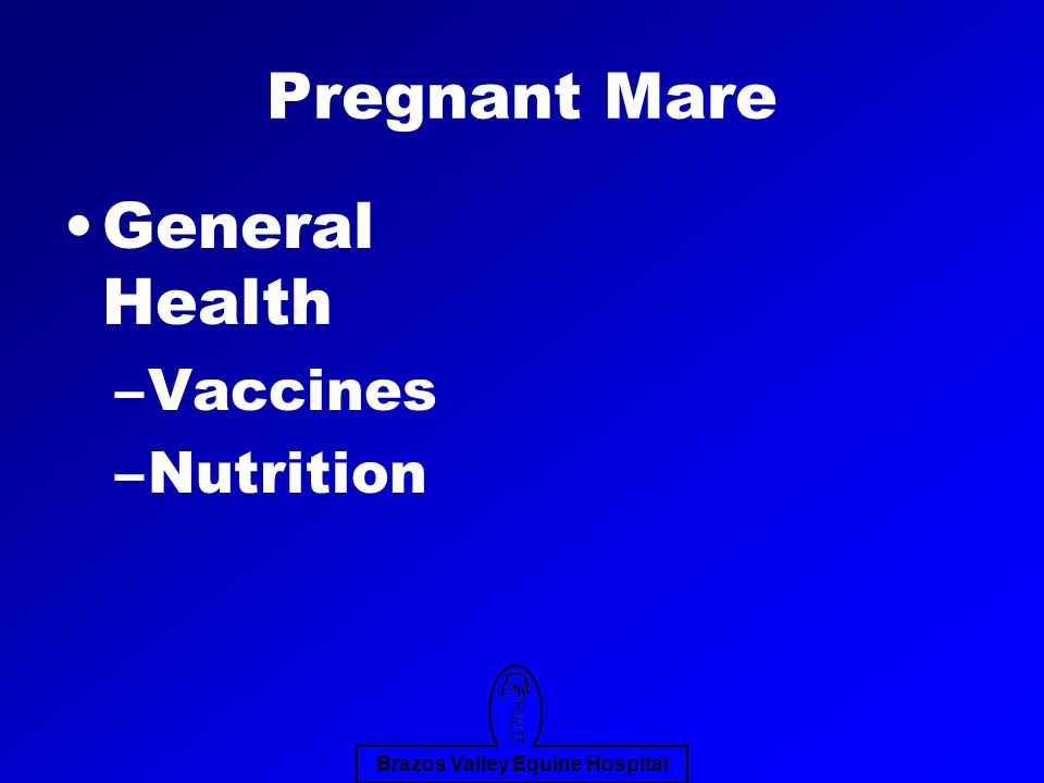 Brazos Valley Equine Hospital Pregnant Mare General Health –Vaccines –Nutrition
