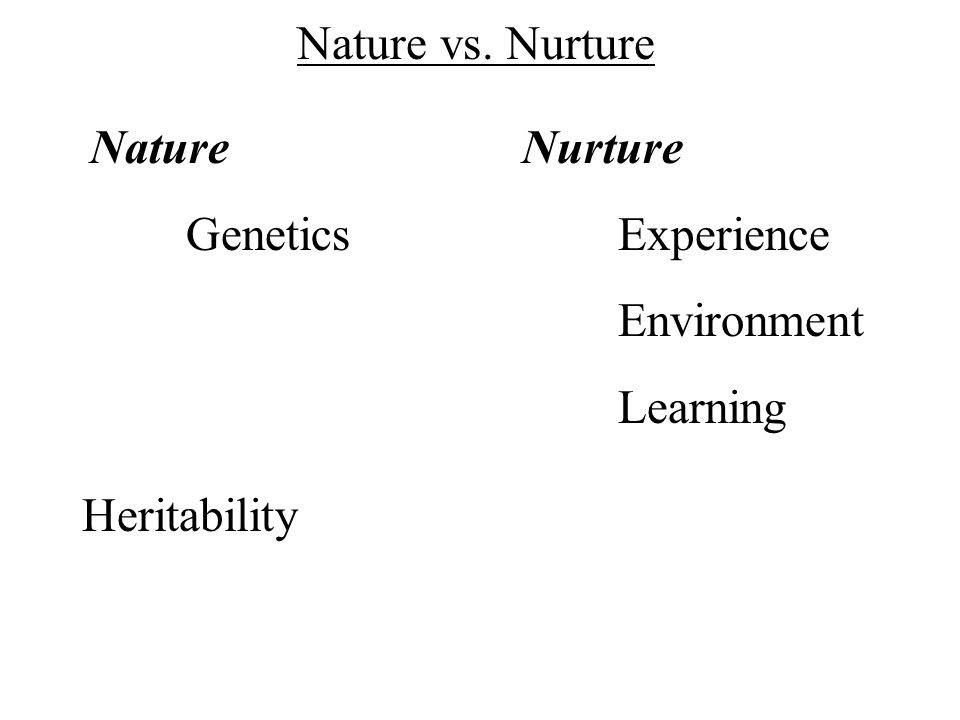 Nature vs. Nurture Nature Genetics Nurture Experience Environment Learning Heritability