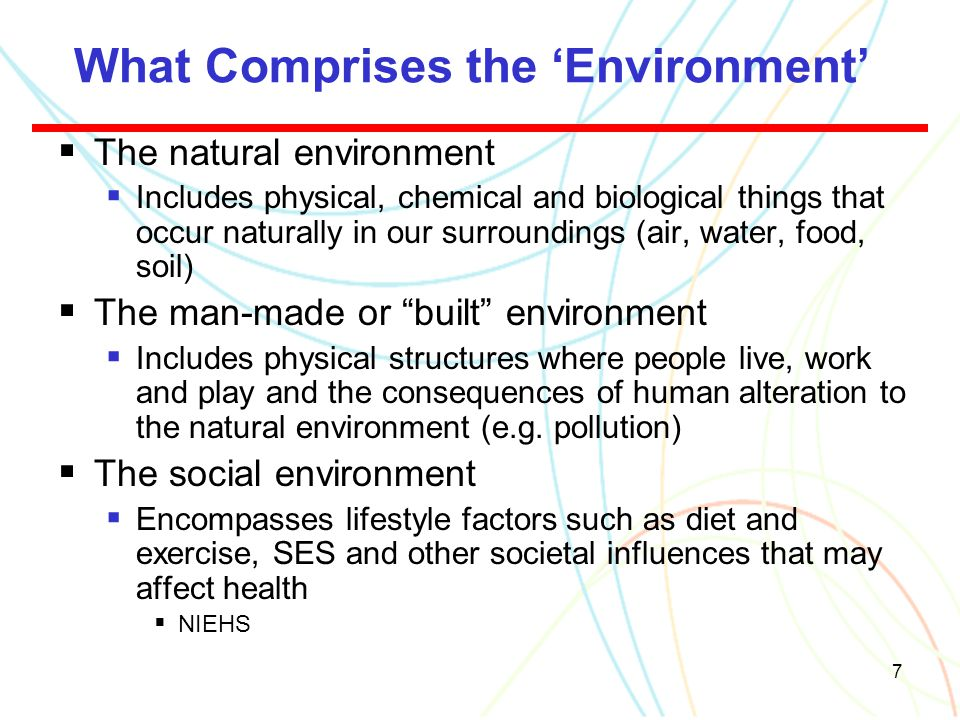 7 What Comprises the 'Environment'  The natural environment  Includes physical, chemical and biological things that occur naturally in our surroundi