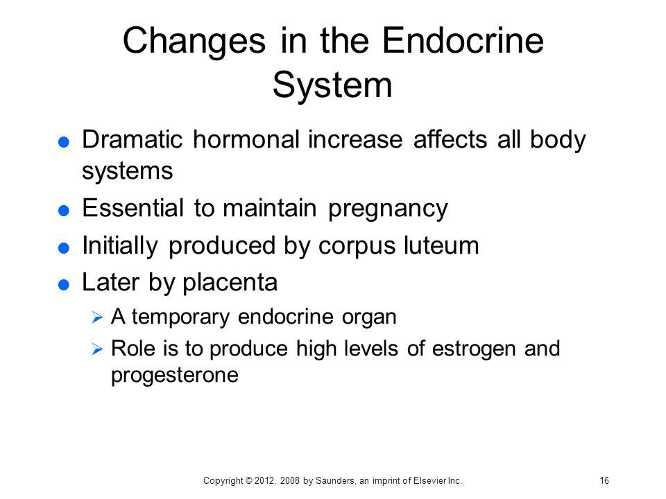 Changes in the Endocrine System  Dramatic hormonal increase affects all body systems  Essential to maintain pregnancy  Initially produced by corpus