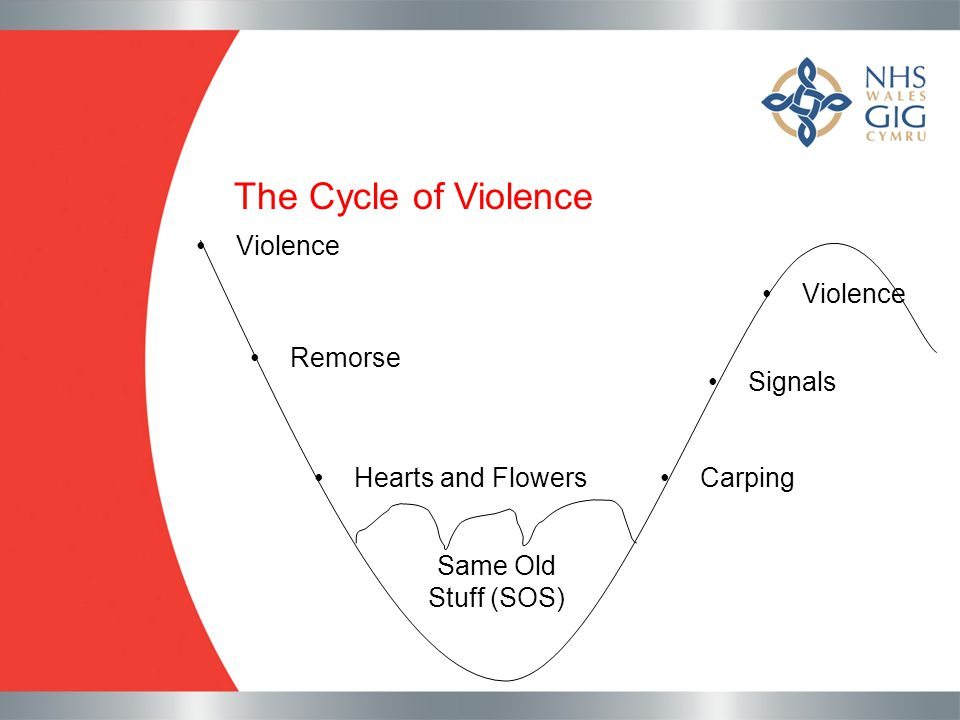 The Cycle of Violence Violence Remorse Hearts and Flowers Same Old Stuff (SOS) Carping Signals Violence