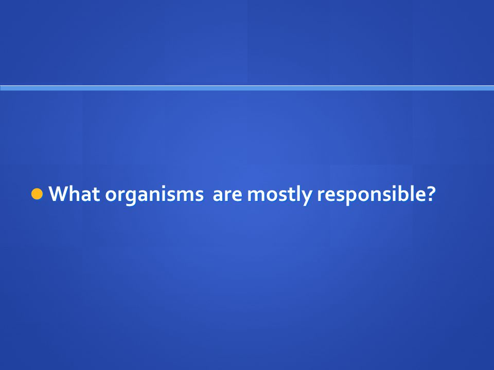 What organisms are mostly responsible? What organisms are mostly responsible?