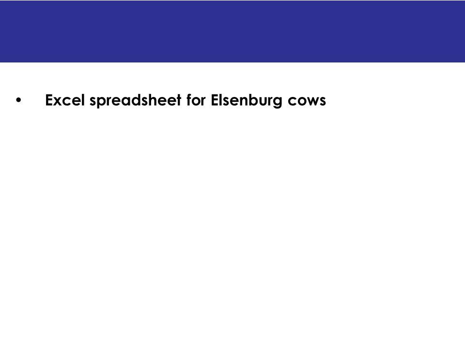 Excel spreadsheet for Elsenburg cows