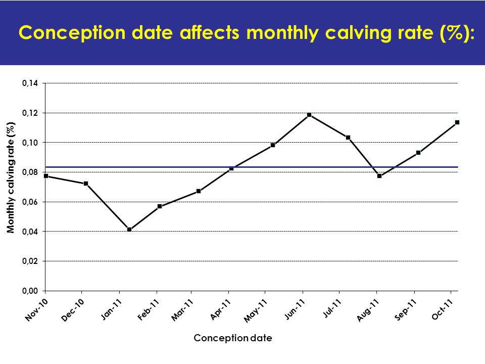 Conception date affects monthly calving rate (%):