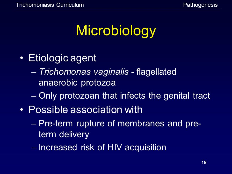 19 Microbiology Etiologic agent –Trichomonas vaginalis - flagellated anaerobic protozoa –Only protozoan that infects the genital tract Possible association with –Pre-term rupture of membranes and pre- term delivery –Increased risk of HIV acquisition PathogenesisTrichomoniasis Curriculum