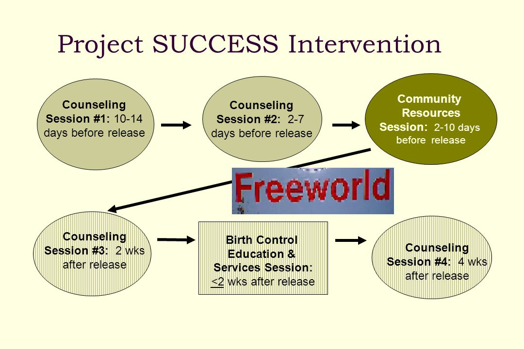 Project SUCCESS Intervention Counseling Session #1: 10-14 days before release Community Resources Session: 2-10 days before release Counseling Session #3: 2 wks after release Counseling Session #4: 4 wks after release Counseling Session #2: 2-7 days before release Birth Control Education & Services Session: <2 wks after release