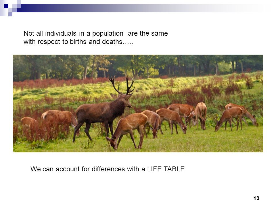 13 Not all individuals in a population are the same with respect to births and deaths….. We can account for differences with a LIFE TABLE