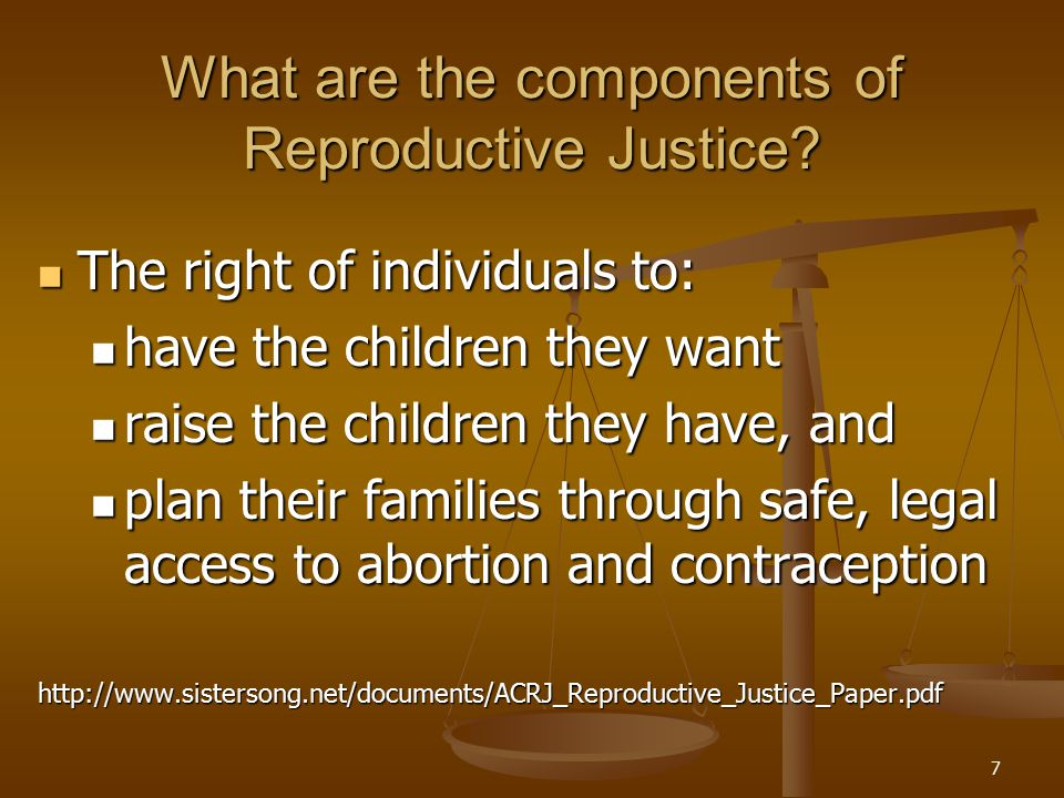 7 What are the components of Reproductive Justice.