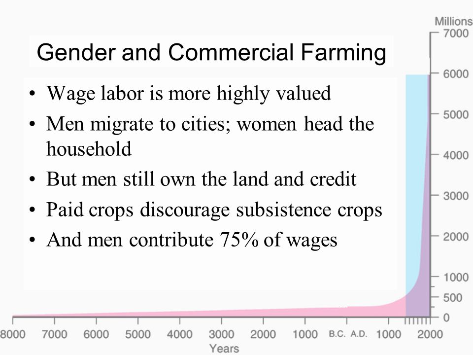 Gender and Commercial Farming Wage labor is more highly valued Men migrate to cities; women head the household But men still own the land and credit Paid crops discourage subsistence crops And men contribute 75% of wages