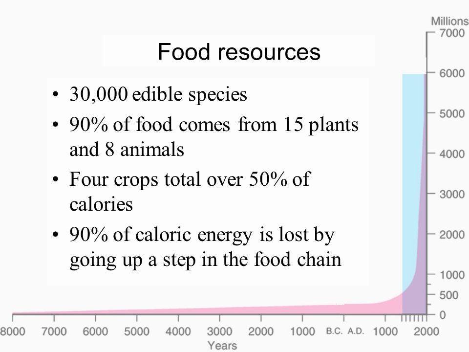 Hunger, malnutrition, and famine Hunger: insufficient food Malnutrition: wrong kind of food –Insufficient protein, Vitamin A, etc.