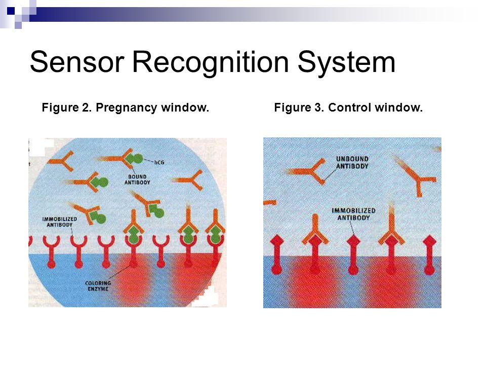 Sensor Recognition System Figure 2. Pregnancy window.Figure 3. Control window.