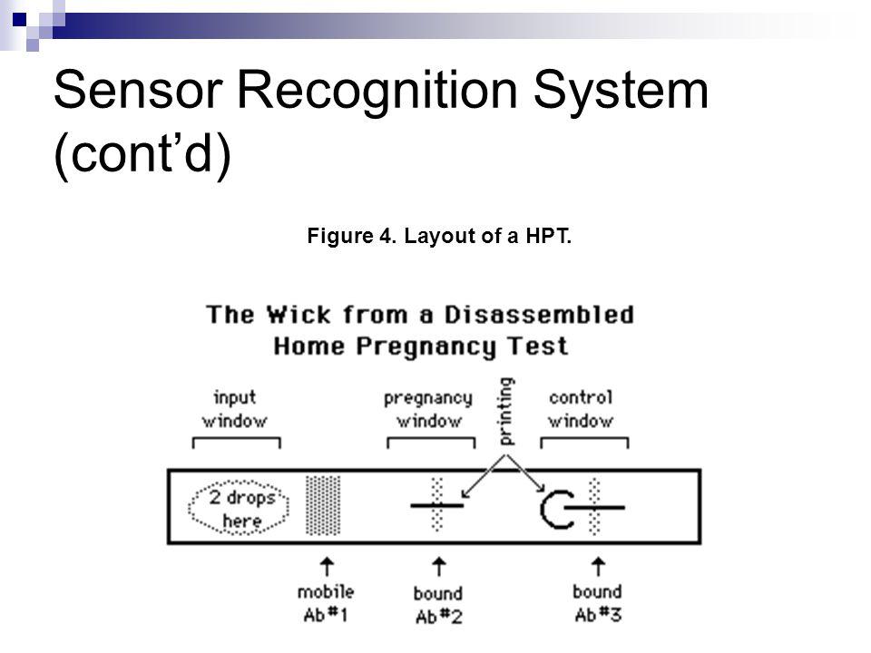 Sensor Recognition System (cont'd) Figure 4. Layout of a HPT.