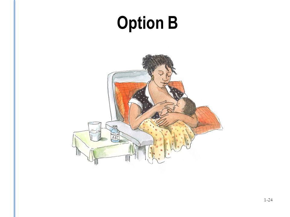 Option B 1-24