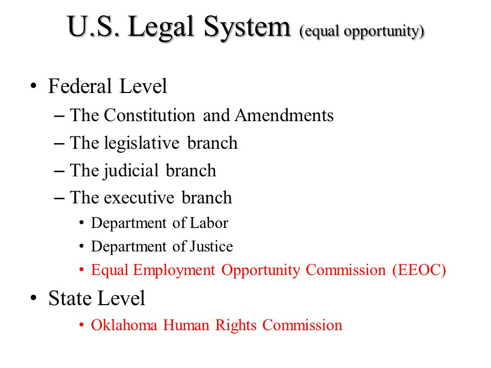 U.S. Legal System (equal opportunity) Federal Level – The Constitution and Amendments – The legislative branch – The judicial branch – The executive b