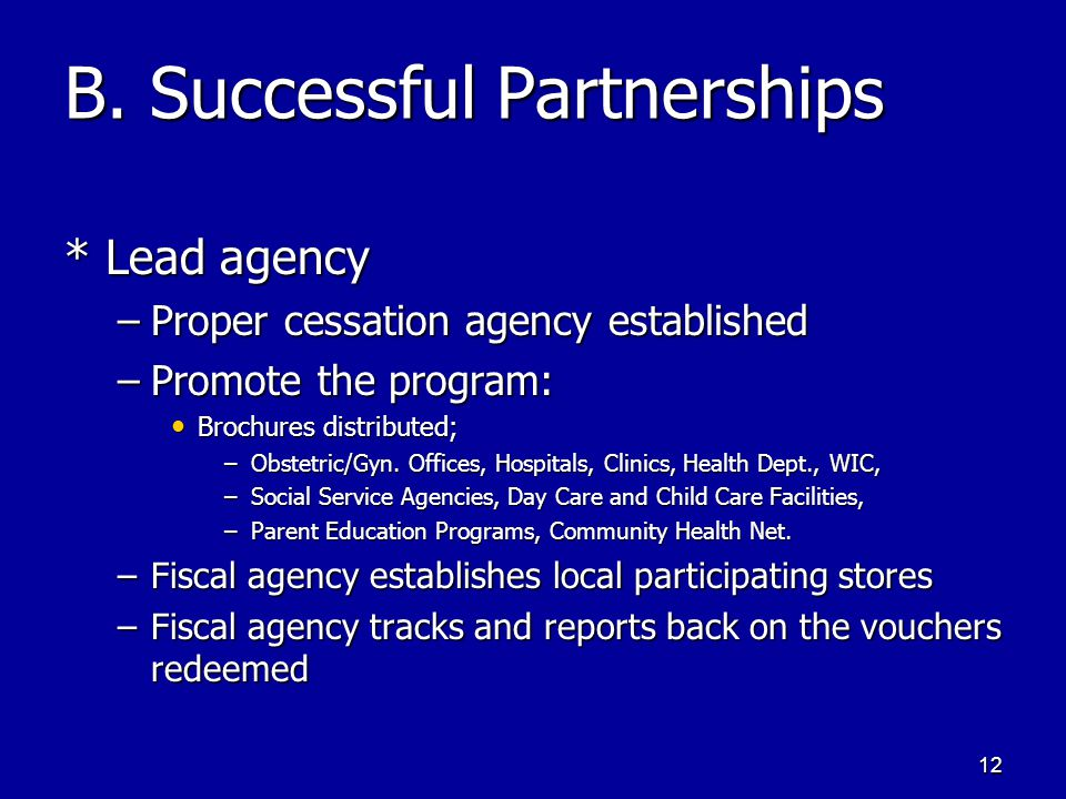 12 B. Successful Partnerships * Lead agency –Proper cessation agency established –Promote the program: Brochures distributed; Brochures distributed; –