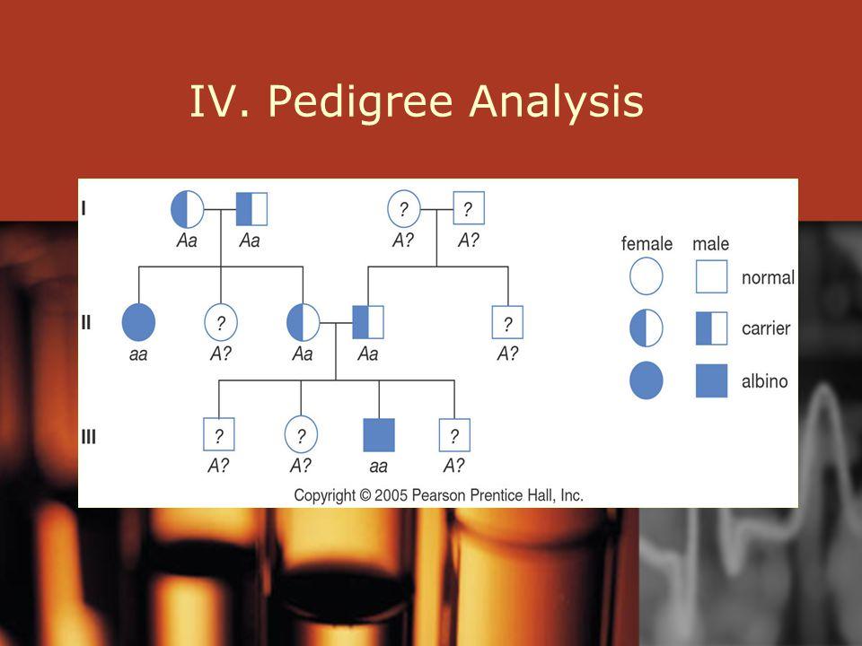 IV. Pedigree Analysis