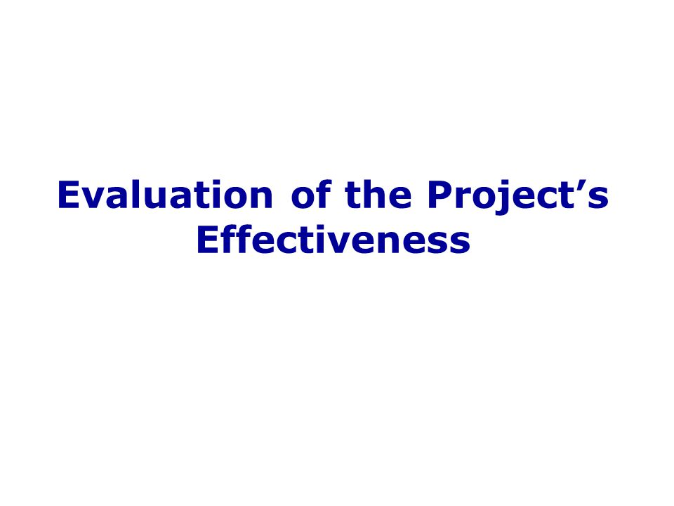 Evaluation of the Project's Effectiveness