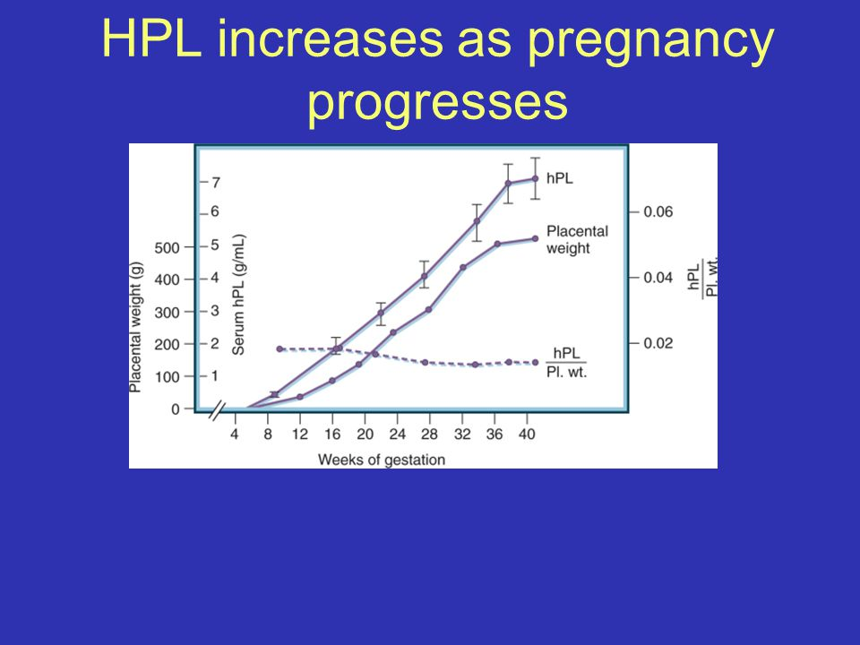 HPL increases as pregnancy progresses