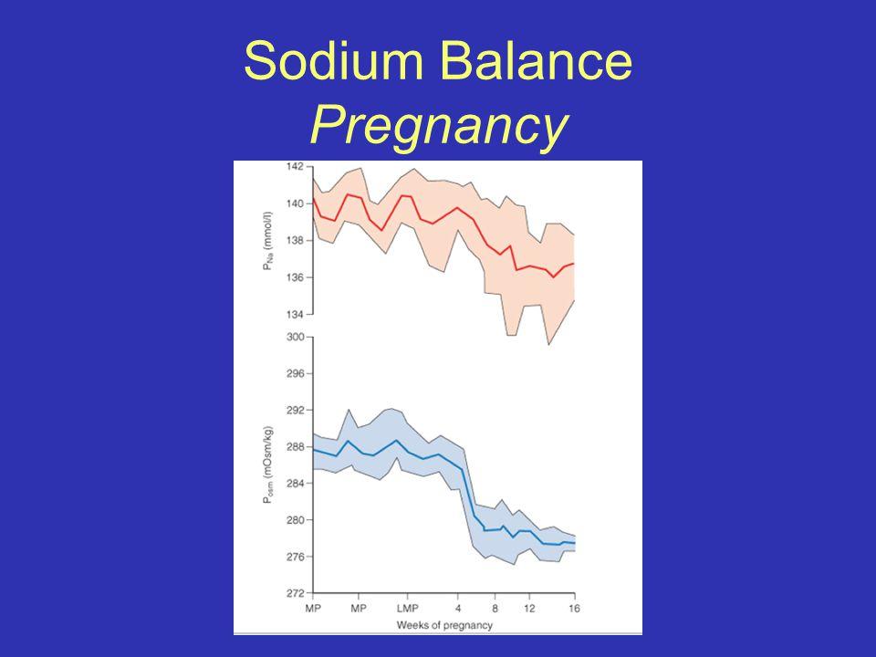 Sodium Balance Pregnancy