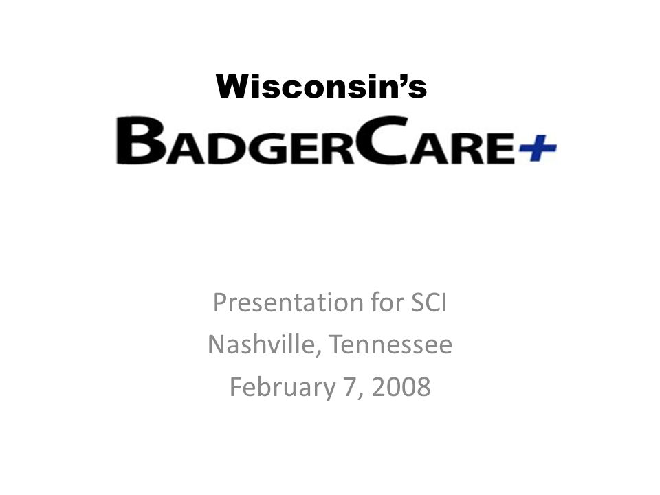 Presentation for SCI Nashville, Tennessee February 7, 2008 Wisconsin's