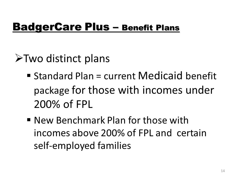 14  Two distinct plans  Standard Plan = current Medicaid benefit package for those with incomes under 200% of FPL  New Benchmark Plan for those with incomes above 200% of FPL and certain self-employed families BadgerCare Plus – Benefit Plans