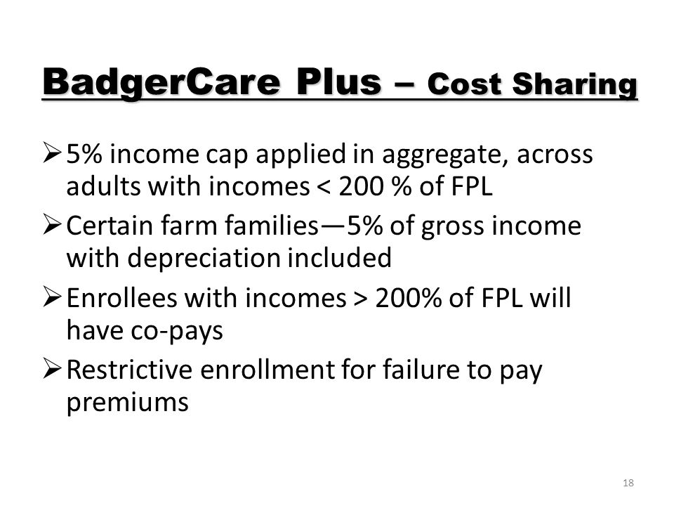 18  5% income cap applied in aggregate, across adults with incomes < 200 % of FPL  Certain farm families—5% of gross income with depreciation included  Enrollees with incomes > 200% of FPL will have co-pays  Restrictive enrollment for failure to pay premiums BadgerCare Plus – Cost Sharing