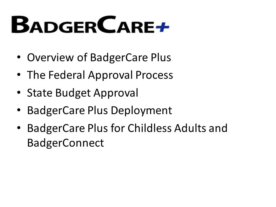 Overview of BadgerCare Plus The Federal Approval Process State Budget Approval BadgerCare Plus Deployment BadgerCare Plus for Childless Adults and BadgerConnect