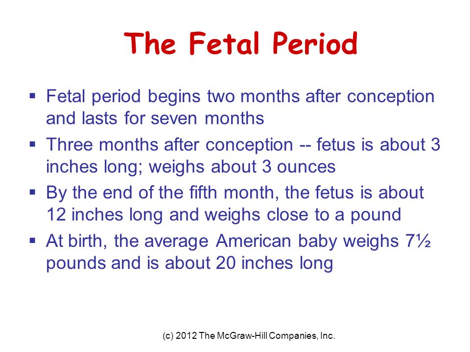 (c) 2012 The McGraw-Hill Companies, Inc. The Fetal Period  Fetal period begins two months after conception and lasts for seven months  Three months