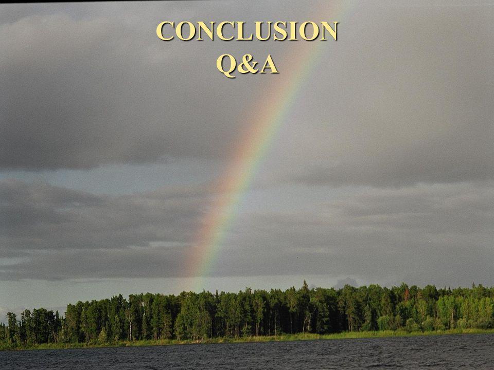 CONCLUSION Q&A