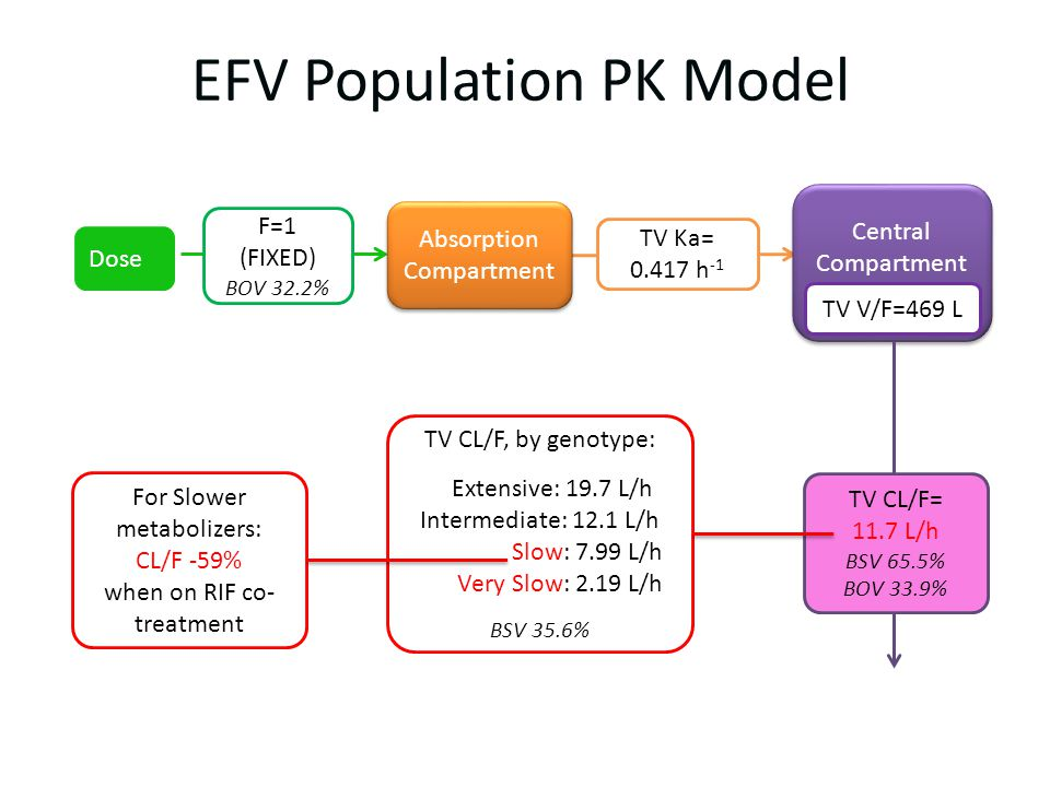 EFV Population PK Model Central Compartment Central Compartment TV Ka= 0.417 h -1 TV V/F=469 L Absorption Compartment Absorption Compartment TV CL/F, by genotype: Extensive: 19.7 L/h Intermediate: 12.1 L/h Slow: 7.99 L/h Very Slow: 2.19 L/h BSV 35.6% F=1 (FIXED) BOV 32.2% Dose TV CL/F= 11.7 L/h BSV 65.5% BOV 33.9% For Slower metabolizers: CL/F -59% when on RIF co- treatment