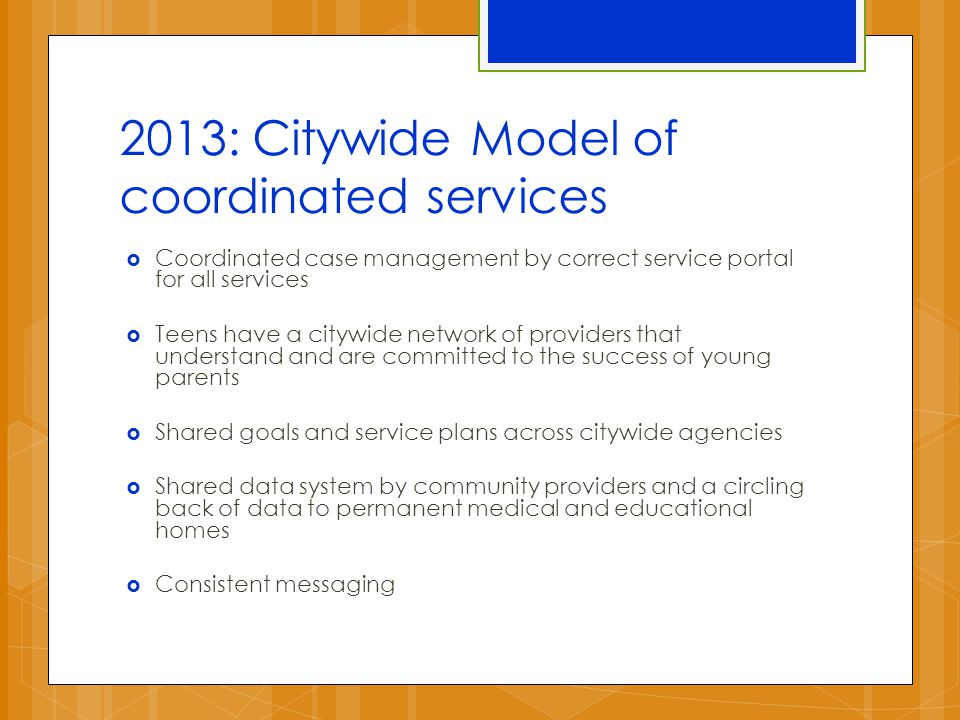 2013: Citywide Model of coordinated services  Coordinated case management by correct service portal for all services  Teens have a citywide network of providers that understand and are committed to the success of young parents  Shared goals and service plans across citywide agencies  Shared data system by community providers and a circling back of data to permanent medical and educational homes  Consistent messaging