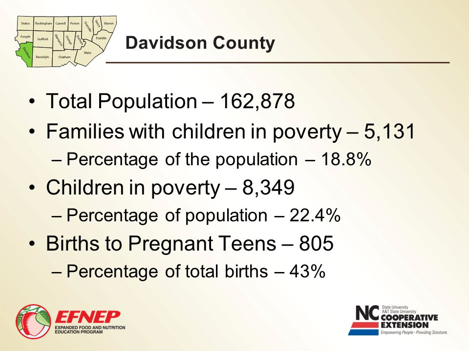 Davidson County Total Population – 162,878 Families with children in poverty – 5,131 –Percentage of the population – 18.8% Children in poverty – 8,349