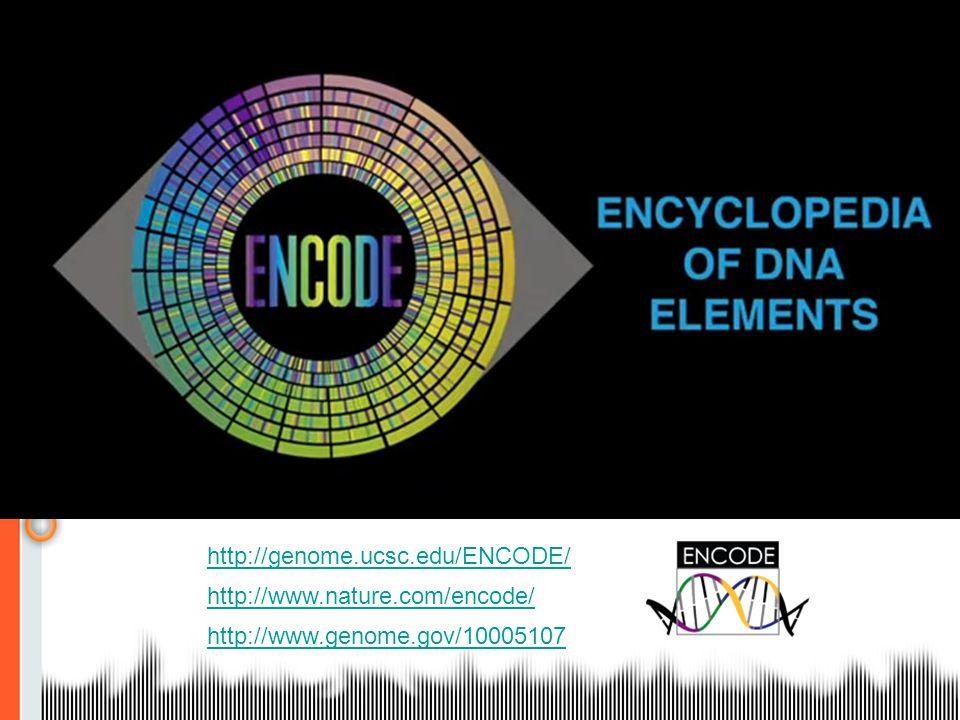 http://genome.ucsc.edu/ENCODE/ http://www.nature.com/encode/ http://www.genome.gov/10005107