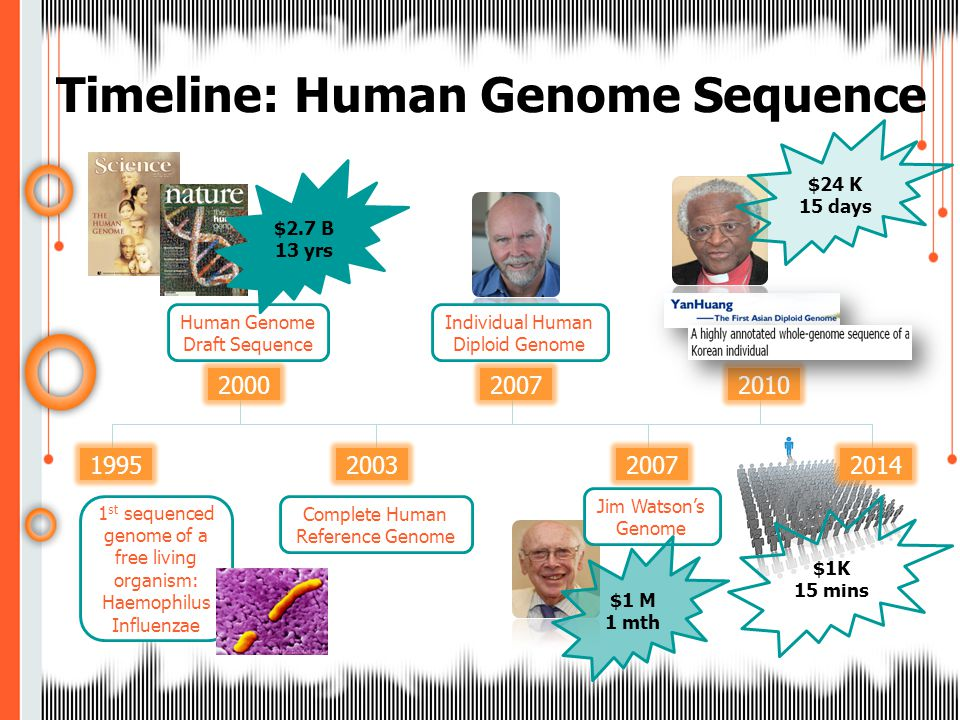 Timeline: Human Genome Sequence 19952014 2000 2003 2007 2010 Human Genome Draft Sequence Complete Human Reference Genome Individual Human Diploid Genome Jim Watson's Genome $2.7 B 13 yrs $24 K 15 days $1 M 1 mth $1K 15 mins 1 st sequenced genome of a free living organism: Haemophilus Influenzae